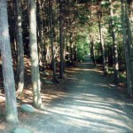 The path in the woods on the East side of the lake