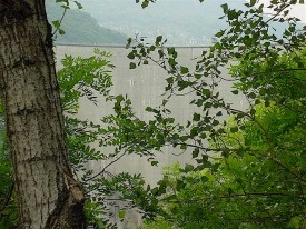 Verzasca Dam