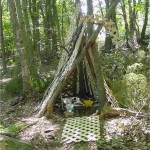 Children's playstructure in the woods