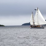 sailboat in Halifax harbour